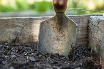 Soil & nutrition