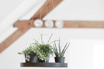 Planters & pots