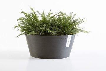 Plantenbakken -en potten