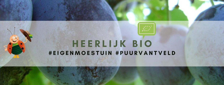 BIO-fruitplanten