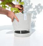 Ecopots Venice 30 cm - bloemen/plantenbak