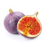Ficus Gustissimo® Perretta® - vijgen - Bio fruitboom