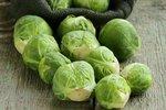 Spruitkool 'Groninger' – Brassica oleracea - Bio groentezaden