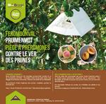 Deltaval Pruimenmot | Incl 2 feromonen