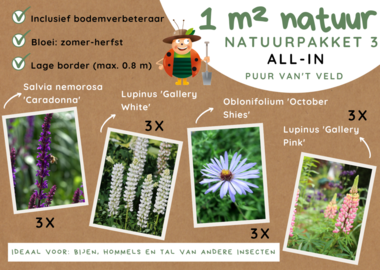 1 m² natuur - lage border all-in-one natuurpakket 3