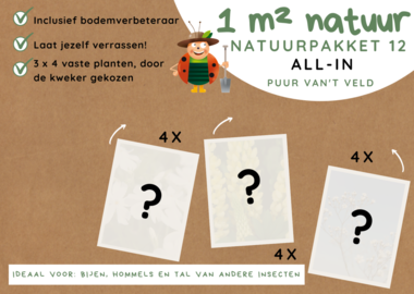 1 m² natuur - 'Verrassingsborder B' all-in-one natuurpakket 12
