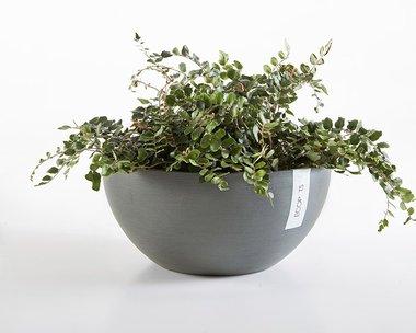 Ecopots Brussels 30 cm - bloemen/plantenbak