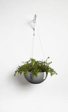 Ecopots Hangend Brussels 27 cm - bloemen/plantenbak