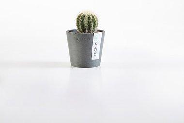 Ecopots Amsterdam mini rond 8 cm - planten/bloembak-pot