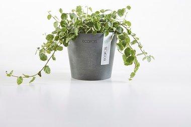 Ecopots Amsterdam mini rond 13 cm - planten/bloembak-pot