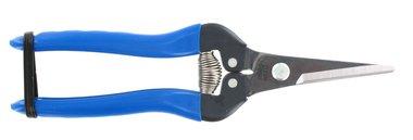 ARS Fruit & tuinschaar 190 mm, recht, blauw