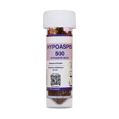 Bodemroofmijten | Hypoaspis