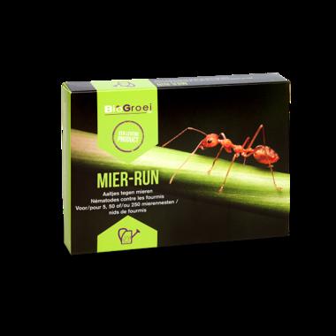 Aaltjes tegen mieren | Mier-run